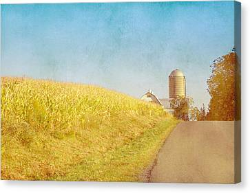 Golden Yellow Cornfield And Barn With Blue Sky Canvas Print by Brooke T Ryan