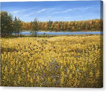 Goldenrod Canvas Print by Doug Kreuger