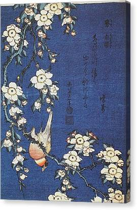 Goldfinch And Cherry Tree Canvas Print by Celestial Images