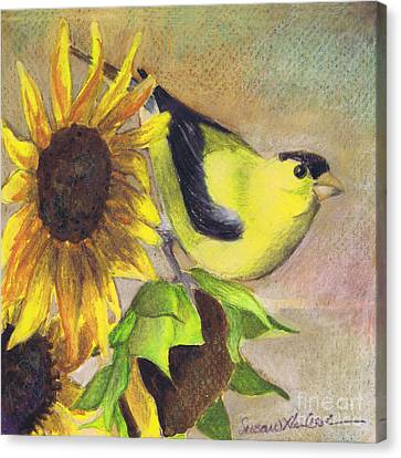 Goldfinch And Sunflowers Canvas Print
