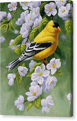 Bird Song Canvas Print - Goldfinch Blossoms Greeting Card 1 by Crista Forest