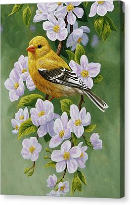Bird Song Canvas Print - Goldfinch Blossoms Greeting Card 2 by Crista Forest