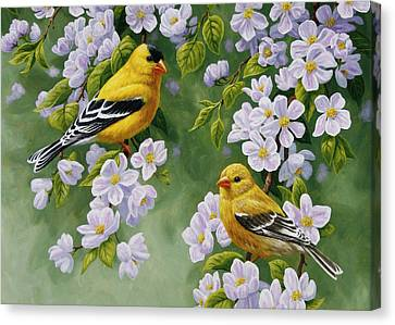 Bird Song Canvas Print - Goldfinch Blossoms Greeting Card 4 by Crista Forest