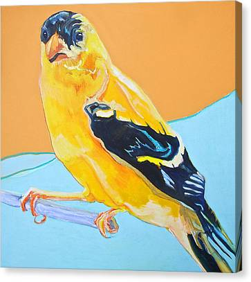 Goldfinch Canvas Print by Jamie Downs