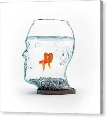 Goldfish In A Bowl Canvas Print