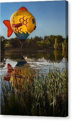 Goldfish Reflection Canvas Print by Linda Villers