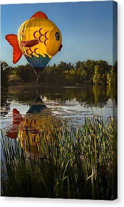 Goldfish Reflection Canvas Print