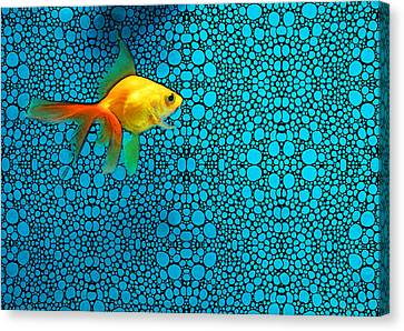 Goldfish Study 3 - Stone Rock'd Art By Sharon Cummings Canvas Print