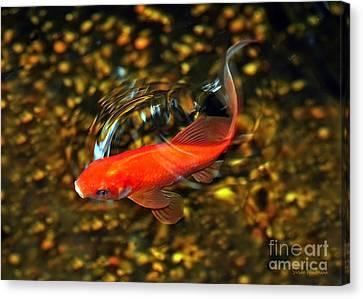 Goldfish Swimming Canvas Print