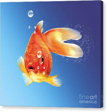 Goldfish With Water Bubbles Canvas Print