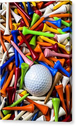 Golf Ball And Tees Canvas Print by Garry Gay