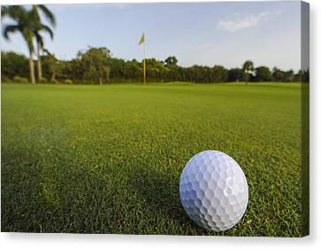 Golf Ball On Golf Course Canvas Print by M Cohen