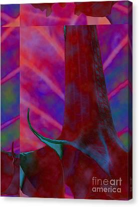 Goliath 10 Canvas Print by Diane DiMarco