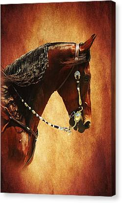 Bay Horse Canvas Print - Gone Country by Davandra Cribbie