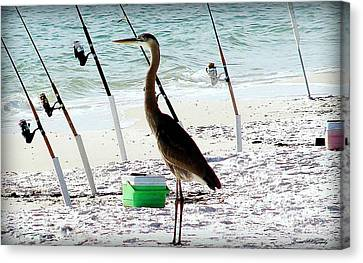 Canvas Print featuring the photograph Gone Fishing by Debra Forand