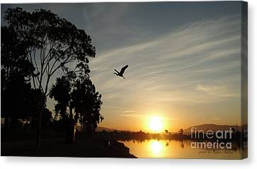 Gone Fishing  Canvas Print by Kevin Ashley