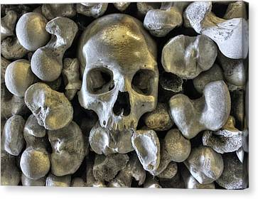 Good Bonesstructure Canvas Print by Ian Hufton