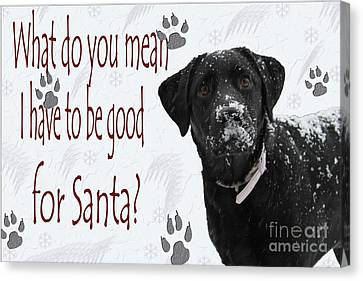 Labradors Canvas Print - Good For Santa by Cathy  Beharriell