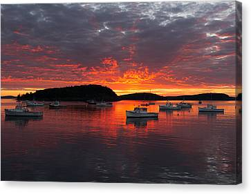 Canvas Print featuring the photograph Good Morning Acadia by Bernard Chen