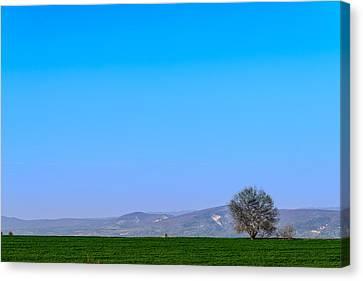 Good Morning  Beautiful World  Canvas Print by Sotiris Filippou
