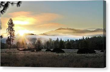 Canvas Print featuring the photograph Good Morning by Julia Hassett