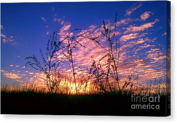 Canvas Print featuring the photograph Good Morning Laramie by Chris Tarpening