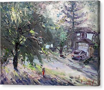Good Morning Neighbor Canvas Print