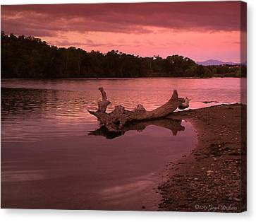 Good Morning Sacramento River Canvas Print