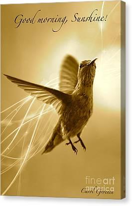Digital Touch Canvas Print - Good Morning Sunshine by Carol Groenen