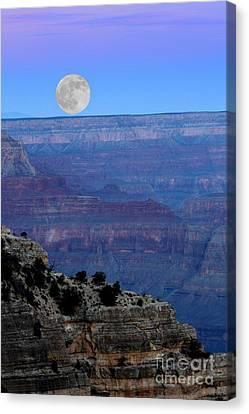 Good Night Moon Canvas Print by Patrick Witz