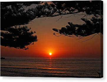 Goodmorning World Canvas Print