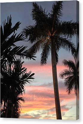 Goodnight Waterside  Canvas Print by K Simmons Luna