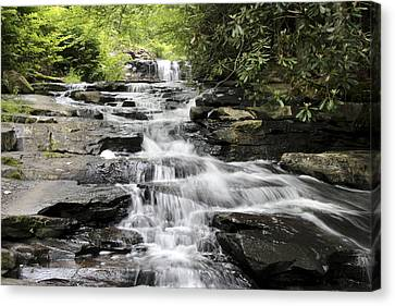 Goose Creek Falls Canvas Print by Robert Camp