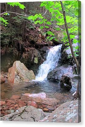 Gorge Waterfall Canvas Print by Elizabeth Dow