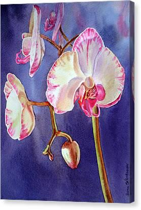 Gorgeous Orchid Canvas Print by Irina Sztukowski