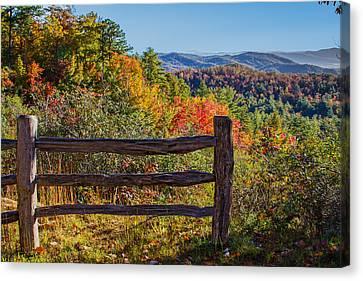 Gorges State Park North Carolina Canvas Print by John Haldane