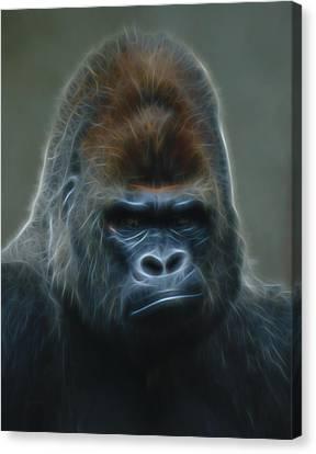 Gorilla Digital Art Canvas Print by Ernie Echols