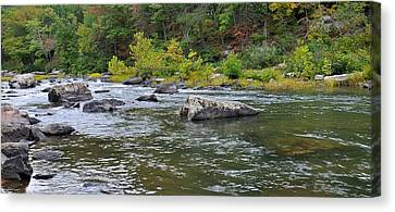 Trout Stream Landscape Canvas Print - Goshen Pass 1 by Todd Hostetter