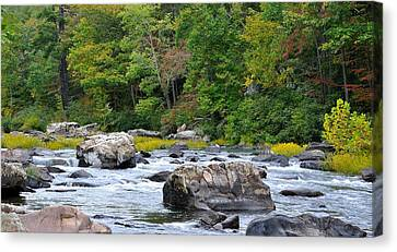 Trout Stream Landscape Canvas Print - Goshen Pass 2 by Todd Hostetter