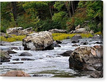 Trout Stream Landscape Canvas Print - Goshen Pass 3 by Todd Hostetter