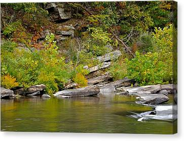 Trout Stream Landscape Canvas Print - Goshen Pass 4 by Todd Hostetter