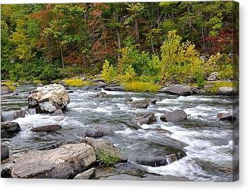 Trout Stream Landscape Canvas Print - Goshen Pass 6 by Todd Hostetter