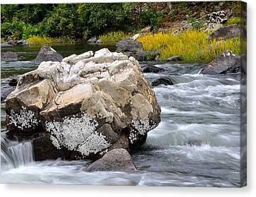 Trout Stream Landscape Canvas Print - Goshen Pass 7 by Todd Hostetter
