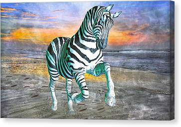 Got My Stripes Canvas Print by Betsy Knapp