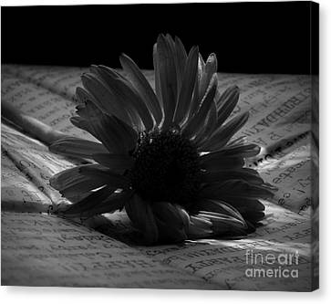 Gothic Birthday Flower Bw Canvas Print by Chalet Roome-Rigdon