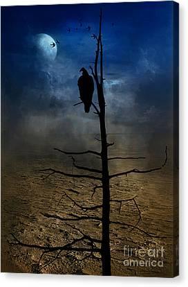 Gothic Landscape  Canvas Print by Andrea Kollo