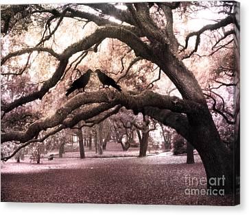 Gothic Surreal Oak Trees And Ravens South Carolina Canvas Print