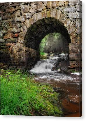 Gothic Waters Canvas Print
