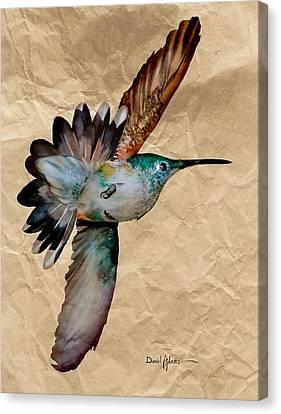 Da180 Grace Daniel Adams Canvas Print