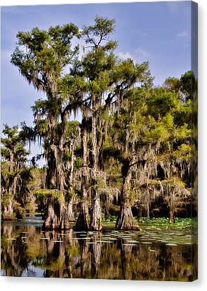 Canvas Print featuring the photograph Grace Of Caddo by Lana Trussell